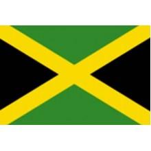 Знаме на Ямайка